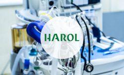 Harol e Pipeline con Parcel